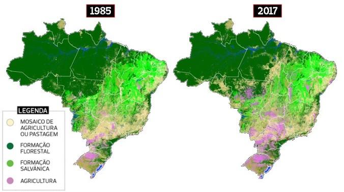 brasil_mapbiomas